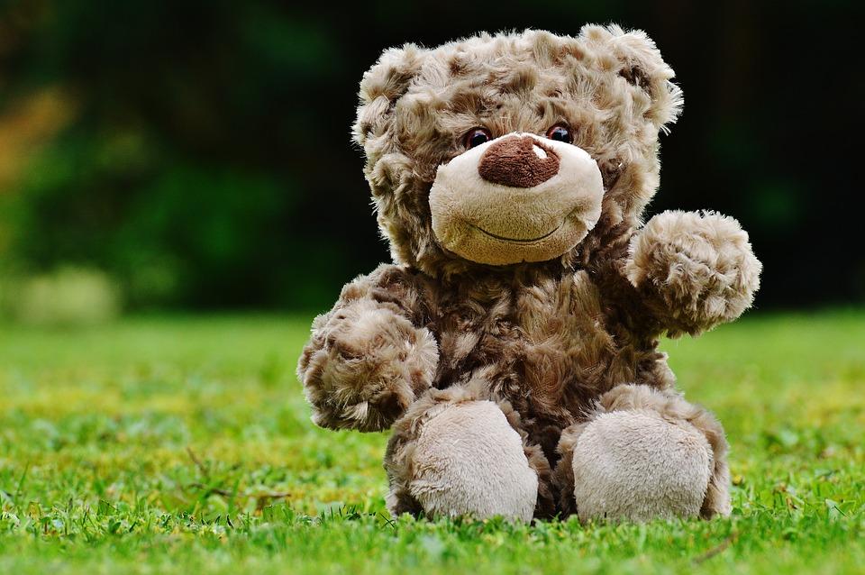teddy-1338895_960_720
